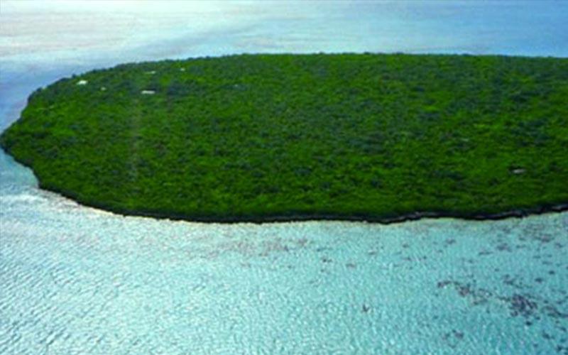 palmier-tour-agence-de-voyages-Ile-aux-Aigrettes
