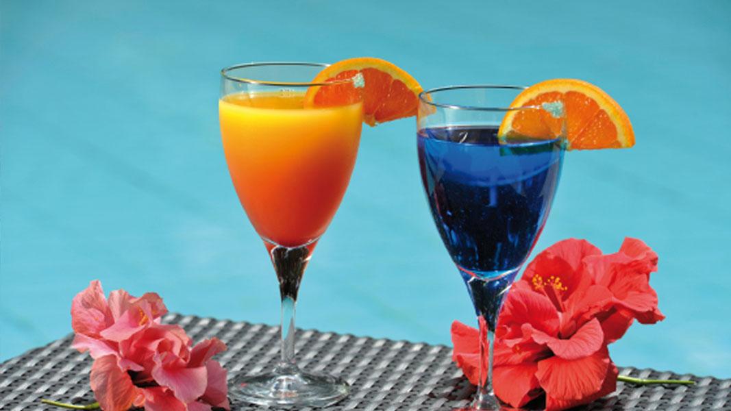 palmier-tour-agence-de-voyages-alamanda-cocktail