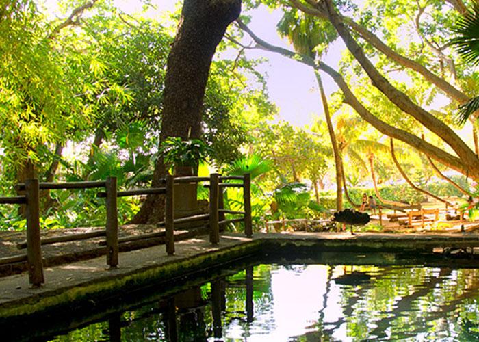 palmier-tour-agence-de-voyages-park-slide-3