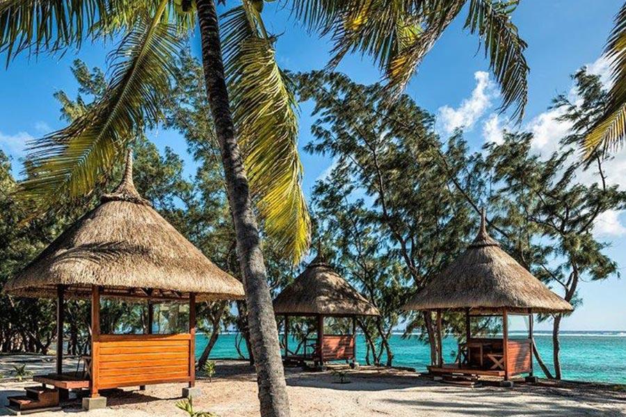 palmier-tour-agence-de-voyages-partie-commune-detente