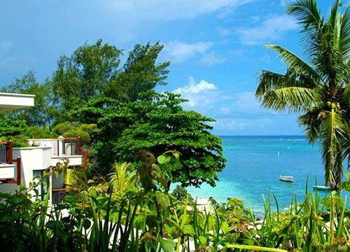 palmier-tour-agence-de-voyages-sea-view-cardinal-hotel