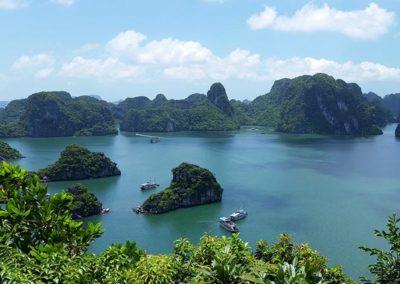 palmier-tour-agence-de-voyages-vietnam-10