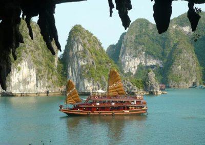 palmier-tour-agence-de-voyages-vietnam-2